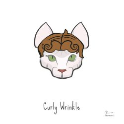Curly Wrinkle — Trendy Hair Styles for Sphinx Cats