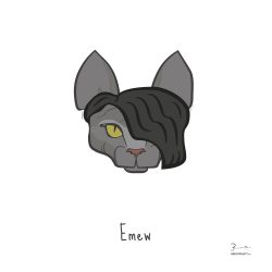 Emew — Trendy Hair Styles for Sphinx Cats