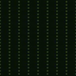 HI Faßion Pinstripe Green :: Brent Pruitt