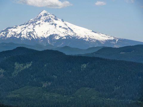 Mt. Hood National Forest. Brent Pruitt, digital photograph, 2013.