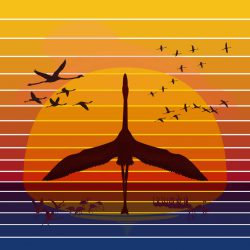 Phoenix Rising [A Tribute to Pulse] :: Brent Pruitt