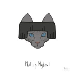 Phillup Mybowl — Trendy Hair Styles for Sphinx Cats