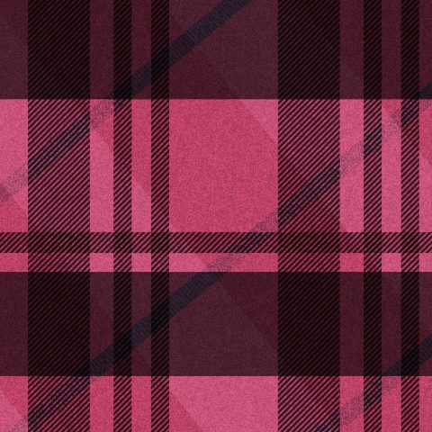 Pink Plaid [One] :: Brent Pruitt 1