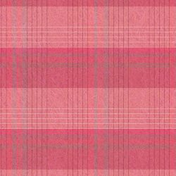 Pink Plaid [Two] :: Brent Pruitt 1