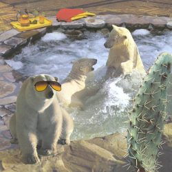 polar bear hot tub :: Brent Pruitt